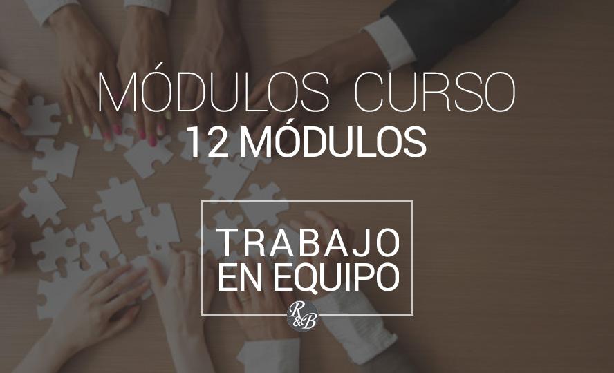 modulos-trabajo-equipo